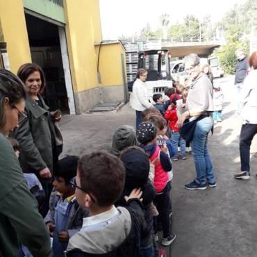 Visite didattiche in oleificio